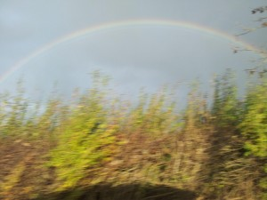 Blurred Rainbow