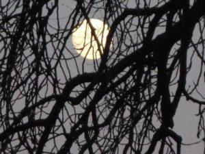 Stolen Moon